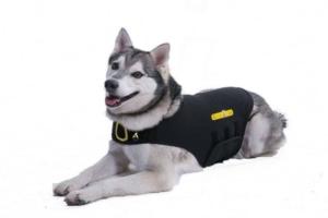 cozyfur dog anxiety vest