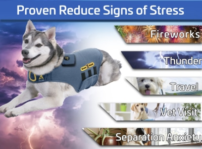 5 thing proven reduce signs of stress by cozyvest