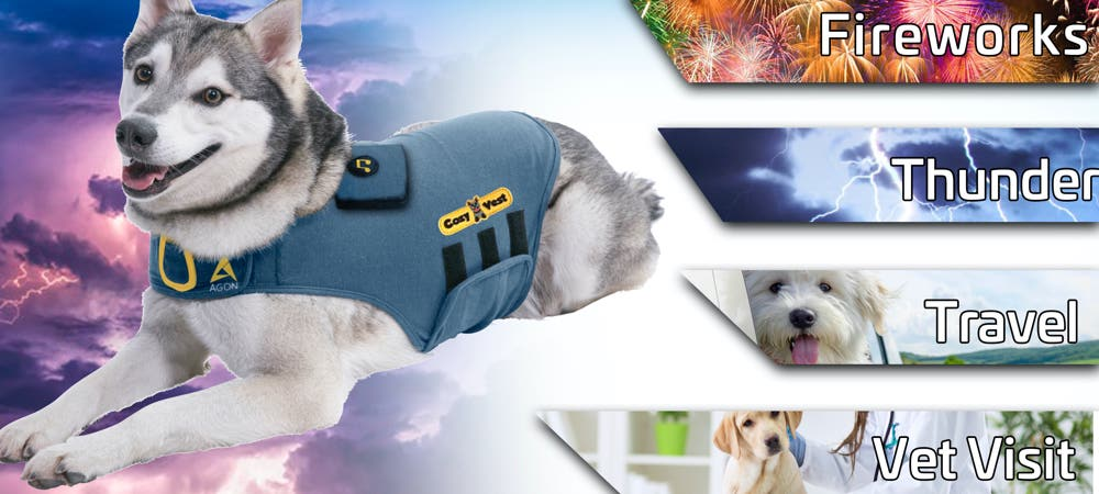 dog anxiety relief shirt